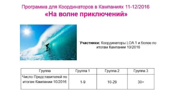 Программа для координаторов на гребне волны 11- 12/2016