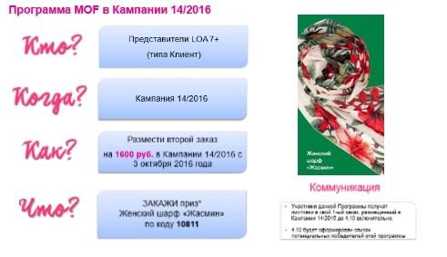 программа на повторный заказ avon 14-2016